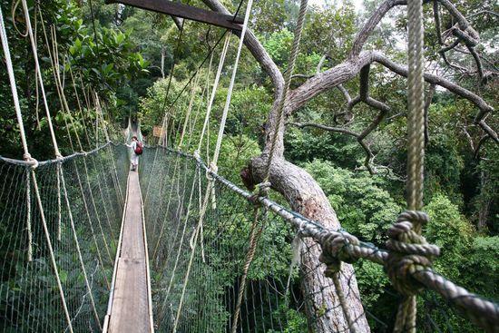 Histoires de ponts en Tanzanie