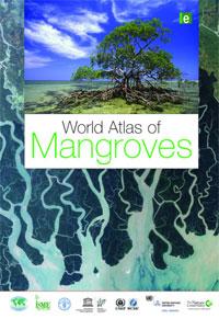 Mangroves, écosystèmes uniques au monde