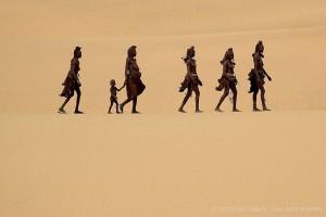 Petit groupe en Namibie avec Christophe Courteau