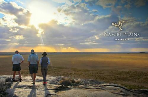 Nouveau dans le Serengeti : le Namiri Plains