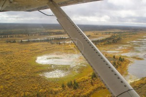 Survol du Wapusk National Park