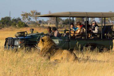 Equipement pour un safari en Afrique