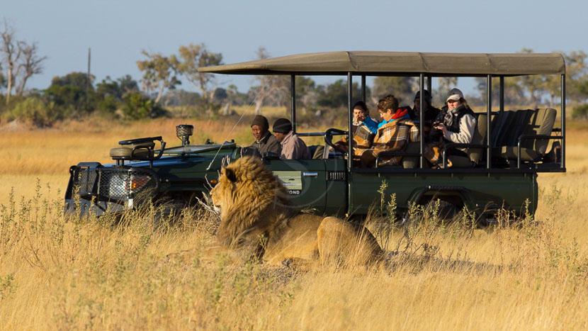 Équipement pour un safari photo en Afrique