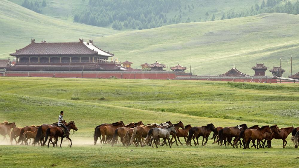 Mongolie, terre de rencontres