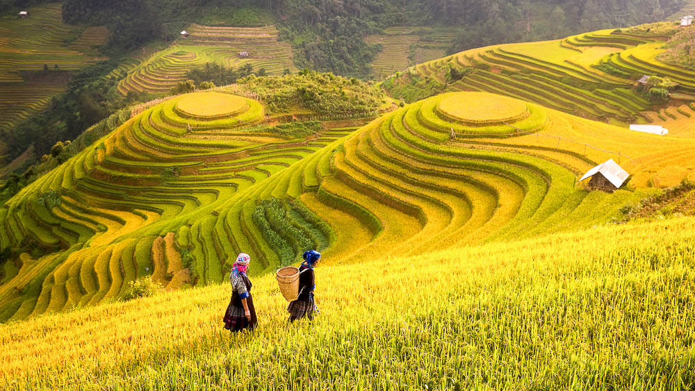L'Indochine par les routes et les rivières du nord