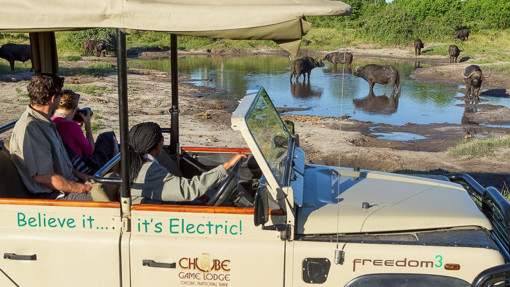 Safari électrique en Tanzanie et au Botswana