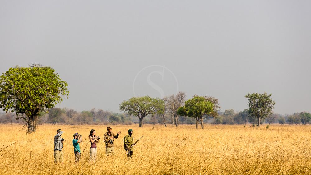 5 pays, 5 spots, 5 expériences africaines