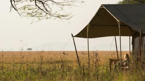 Serengeti Camp, Tanzanie © Nomad