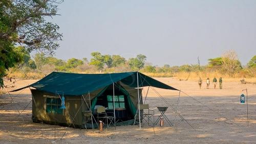 Safari à pied à South Luangwa, Zambie © Robin Pope Safaris