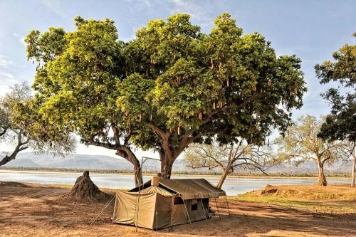 Zambezi Life Style Camp, Zimbabwe © African Bush Camps