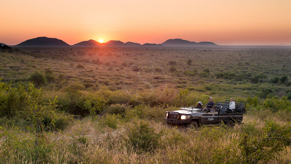 Madikwe Safari Lodge, Afrique du Sud © More