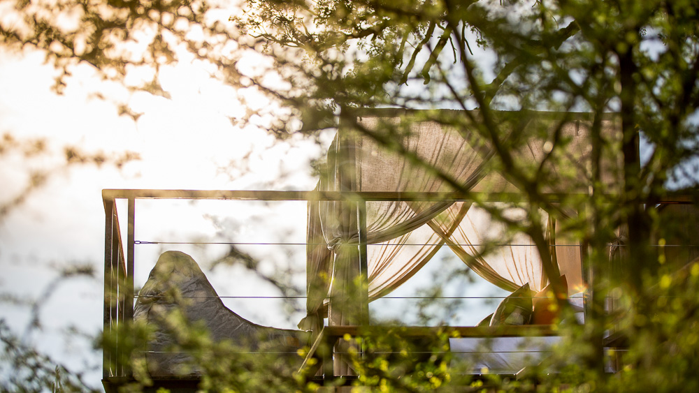 Marataba Thabametsi Treehouse, Afrique du Sud © More