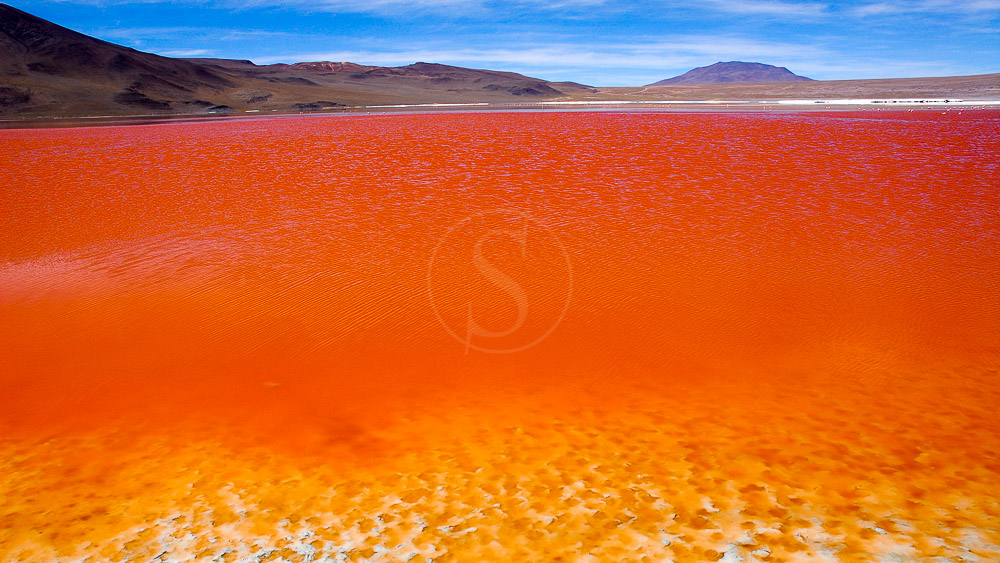 Laguna Colorada, Bolivie © Alain Pons