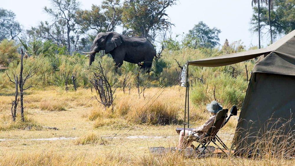 andBeyond Explorer Safari, Botswana © &Beyond