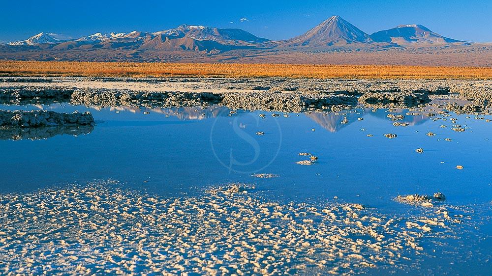 Laguna Cejar, Chili © Tierra Atacama