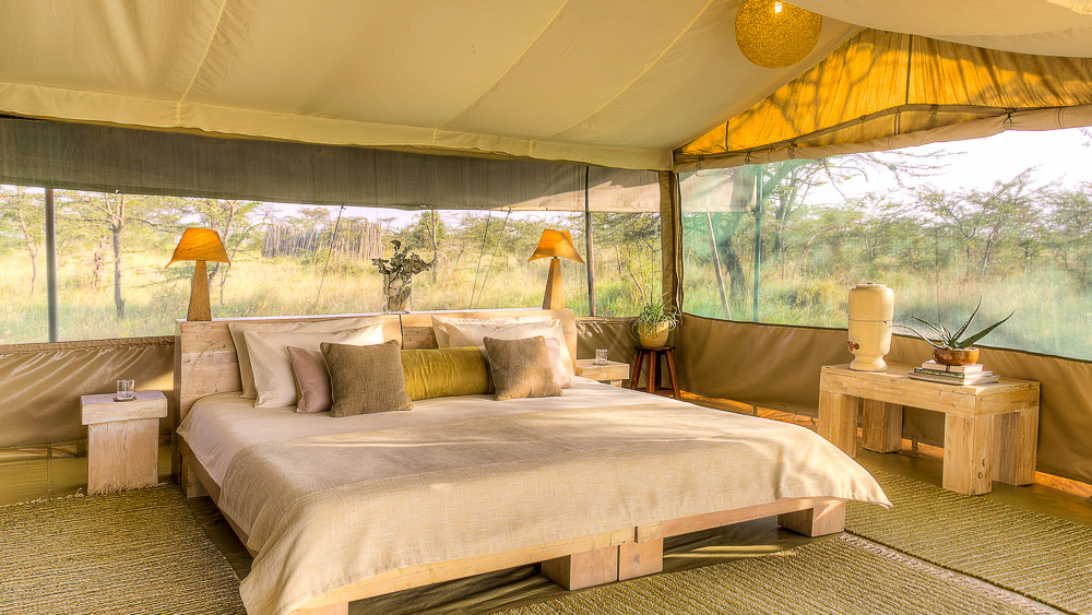 Kicheche Bush Camp, Kenya