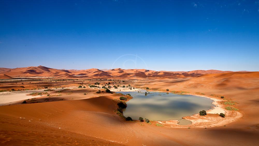 Dunes de Sossusvlei dans le Désert du Namib
