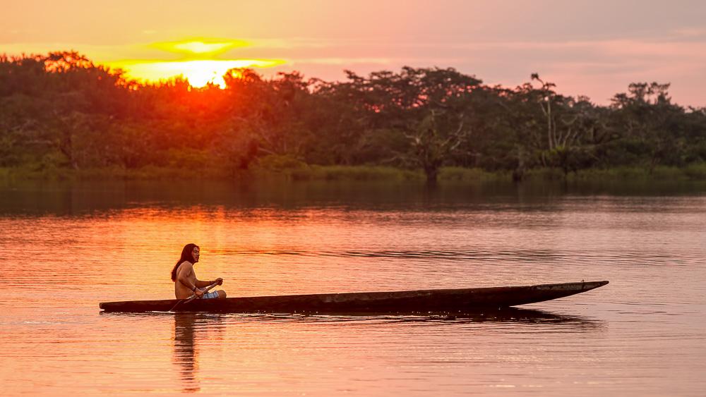 Amabiance d'Amazonie, Equateur