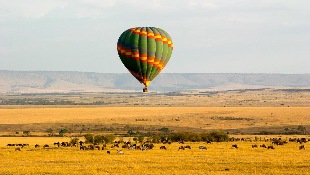 Safari en ballon dans le Masai Mara, Kenya