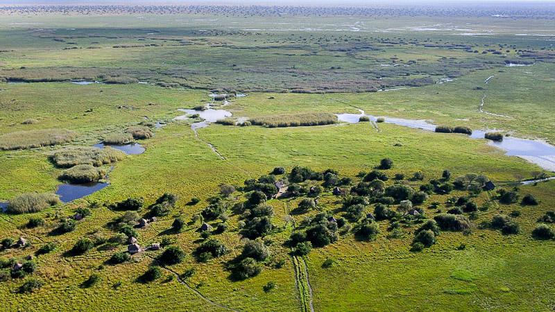 Bec en sabot dans Bangwelu, Zambie