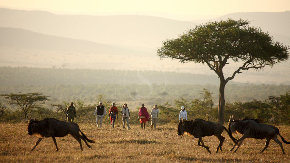Kicheche Walking Safaris, Kenya
