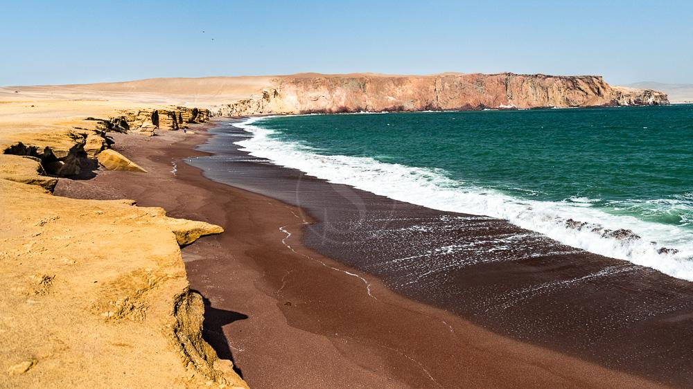 Région de Paracas, Pérou