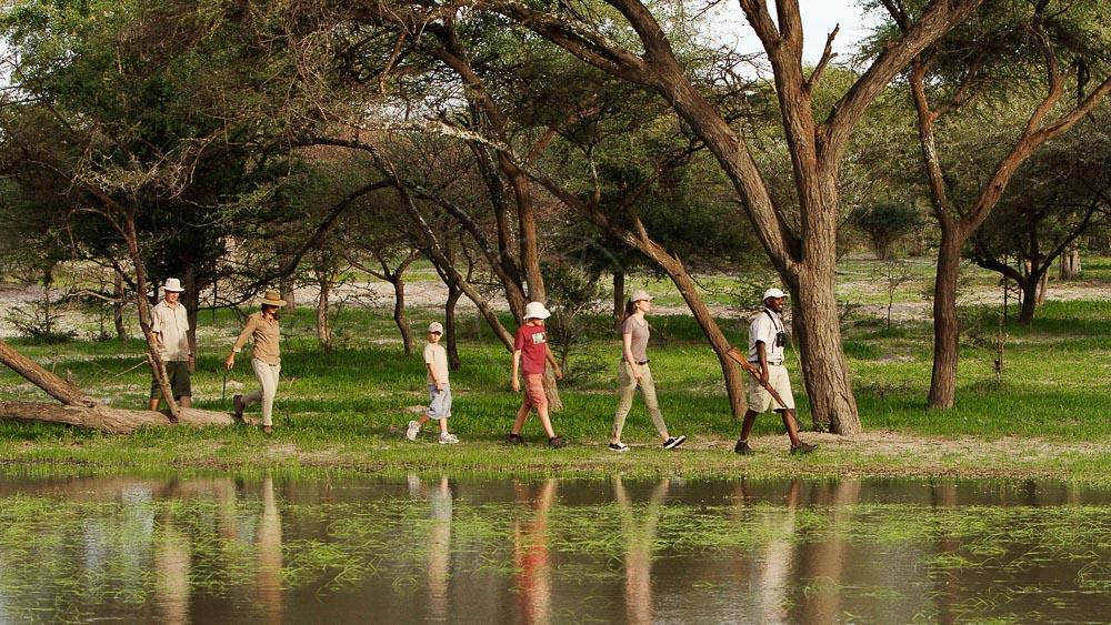 Safari Young Explorer, Delta de l'Okavango, Botswana