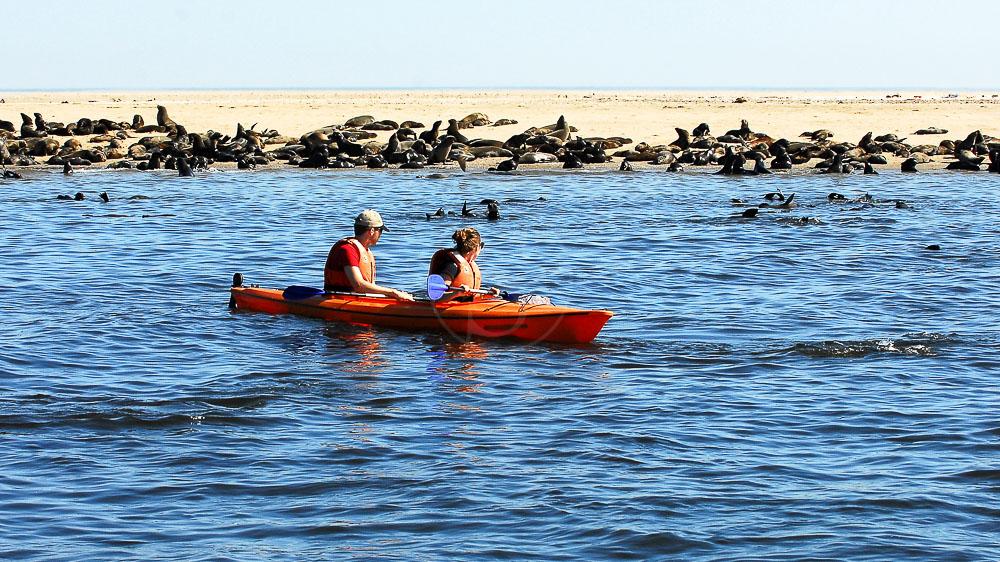 Kayak à Walvis Bay, Namibie