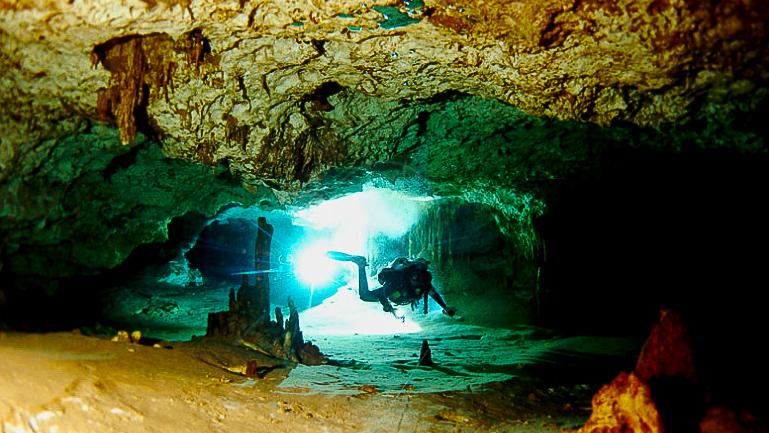 Vie sous-marine à Playa des Carmen © Phocea Mexico