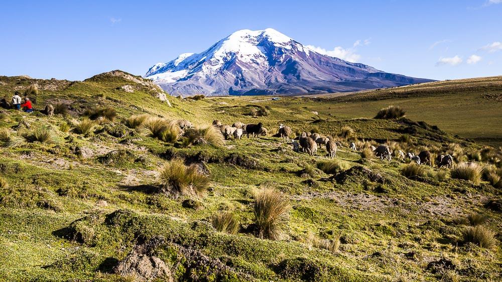 Andes, Equateur