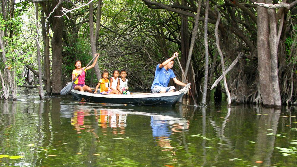 Amazon Dream, Brésil