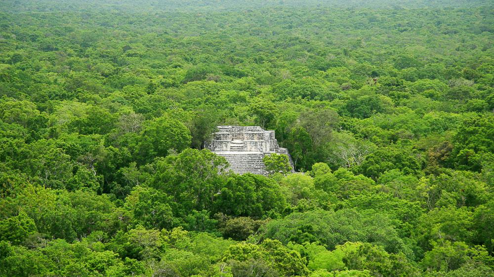 Calakmul, Yucatan, Mexique