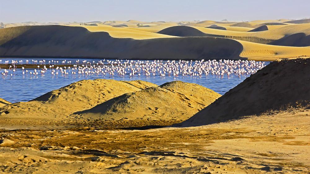 Walvis Bay, Namibie