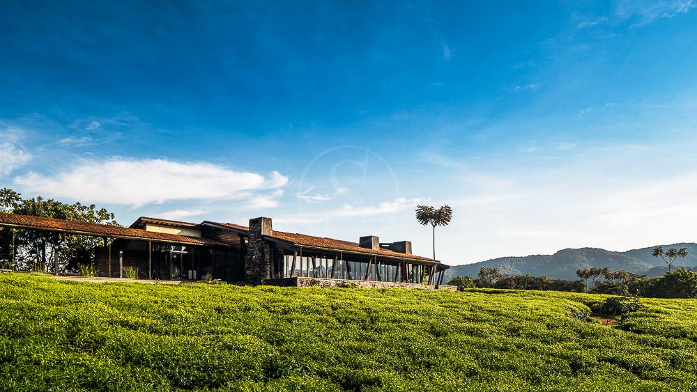 Nyungwe House, Rwanda © One & Only