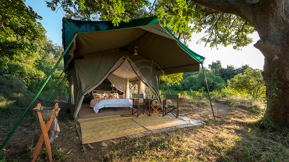 John's Camp Mana Pools, Zimbabwe © Dana Allen, Robin Pope