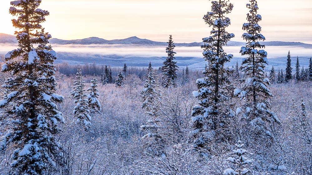 Découverte du Yukon, Canada © Denis Palanque