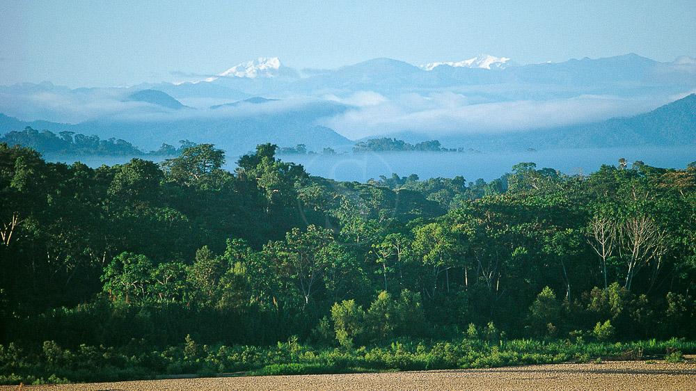 Région de Tambopata, Pérou