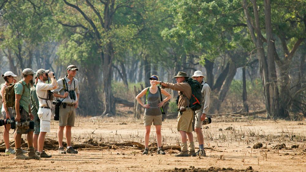 John's Camp Mana Pools, Zimbabwe © Robin Pope