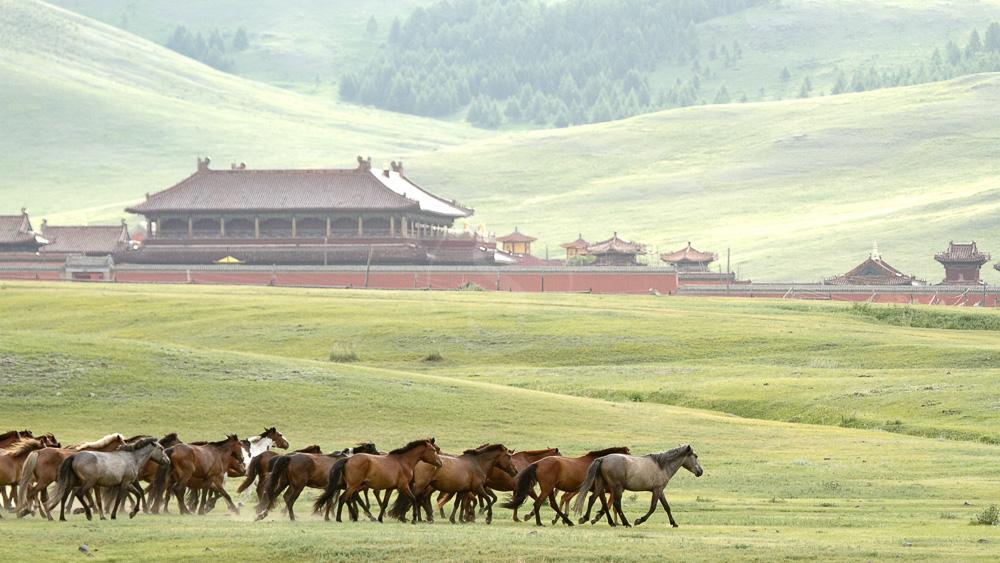 Monastère de Amarbayasgalant, Mongolie