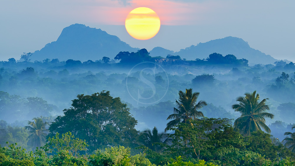 Lever du jour au Sri Lanka © Shutterstock
