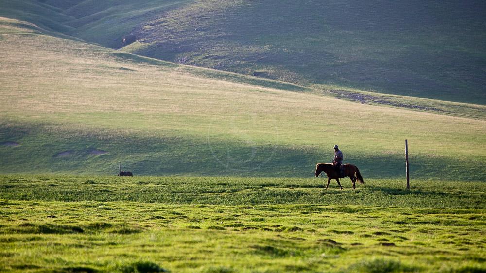Vallée d'Orkhon, Mongolie