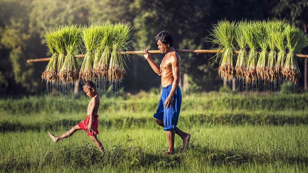 Ambiance du Laos