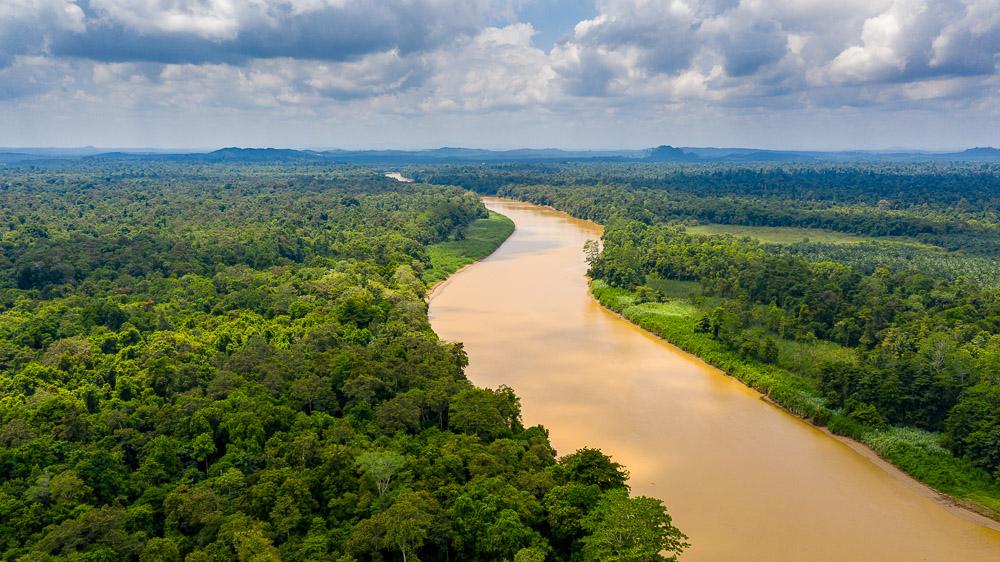Rivière Kinabatangan, Malaisie