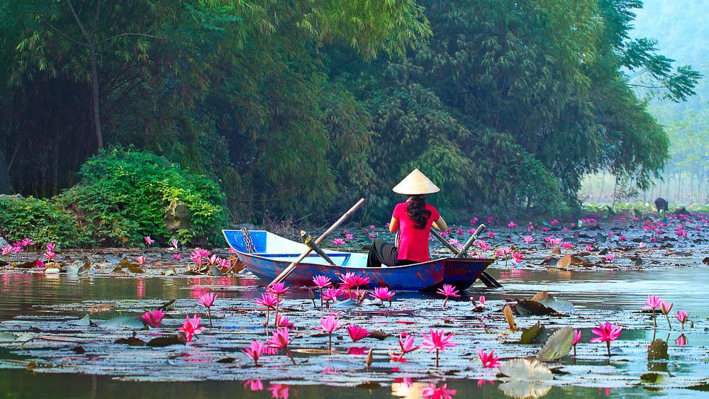 Région de Hanoi, Vietnam