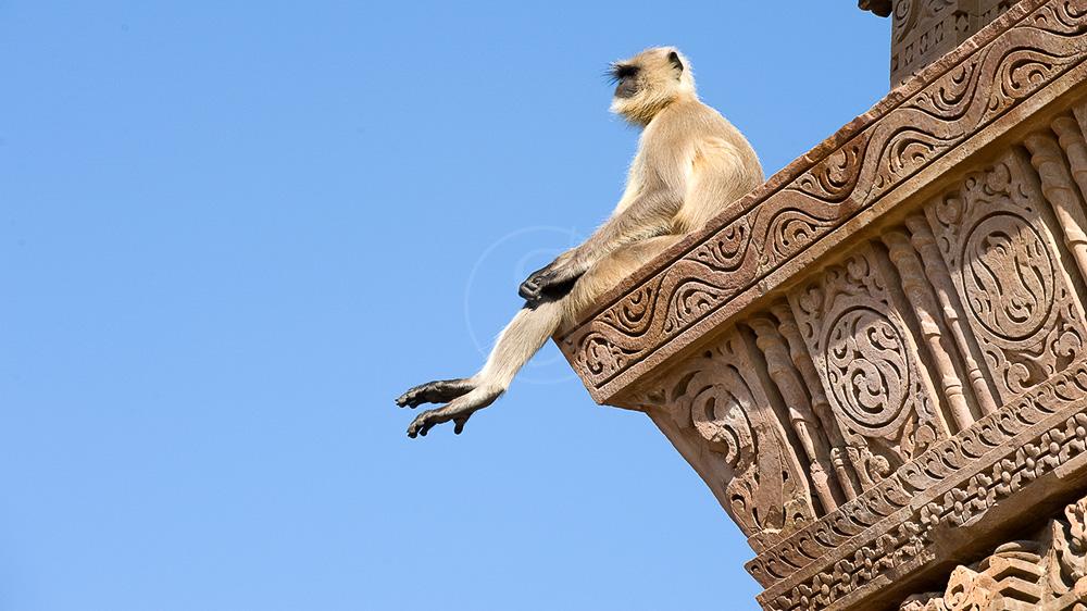 Ambiances indiennes © Alain Pons