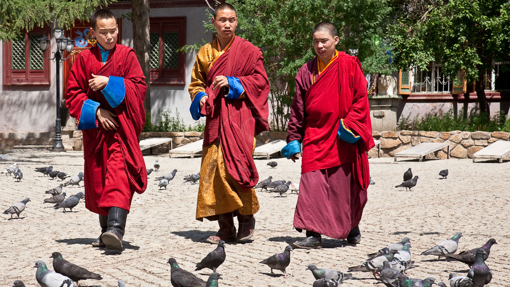 Monastère à Oulan Bator, Mongolie