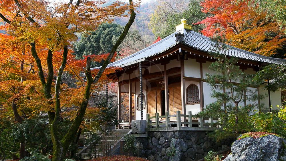 Temple de Hogon à Kyoto, Japon © jnto