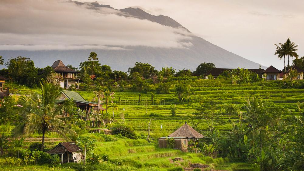 Région de Sidemen, Bali, Indonésie