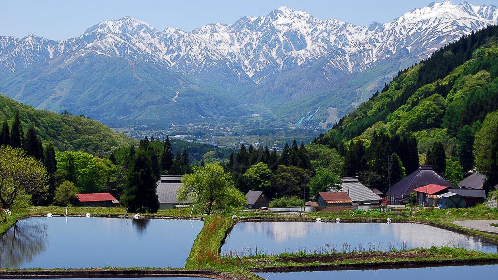 Village de Hakuba, région de Aoni, Japon © jnto