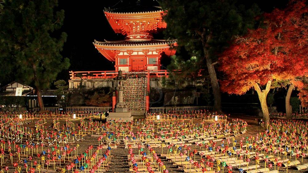Kyoto Daikakuji, Japon © jnto